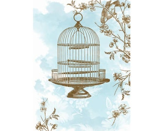 A6 Greeting Card - Blue Birdcage