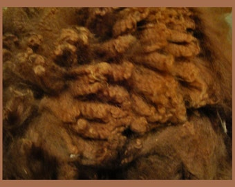 Raw Alpaca  Fiber Brown 1 Lb. Superfine Grade Skirted  Tumbled