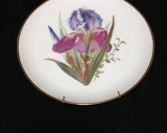 Vintage 24kt Gold trim Bearded Iris Decorative Plate (LDT2)