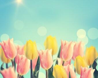 D-4902 spring Tulip backdrop