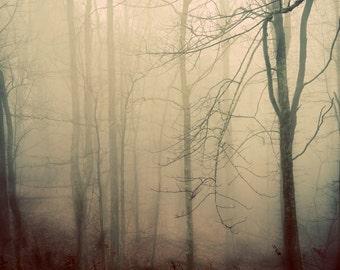 Mountain Fog II