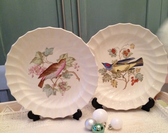 Vintage Spode House finch and Arkansas Kingbird collectors plates. Pair of wall plates.