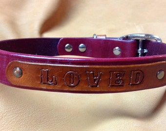 Leather Dog Collar:  LOVED name plate.