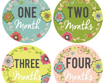 INSTANT DOWNLOAD - Monthly Onesie Labels - Floral Onesie Labels (Months 1-12)