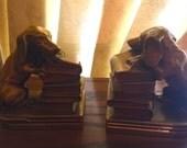 Brass Book Ends Daschund with Books