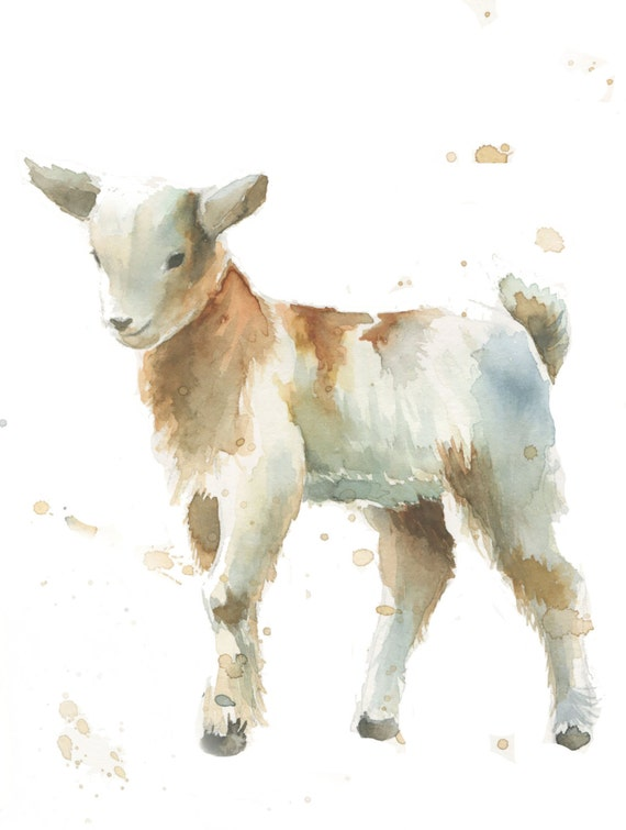 baby goat farm animal print of my watercolor painting by