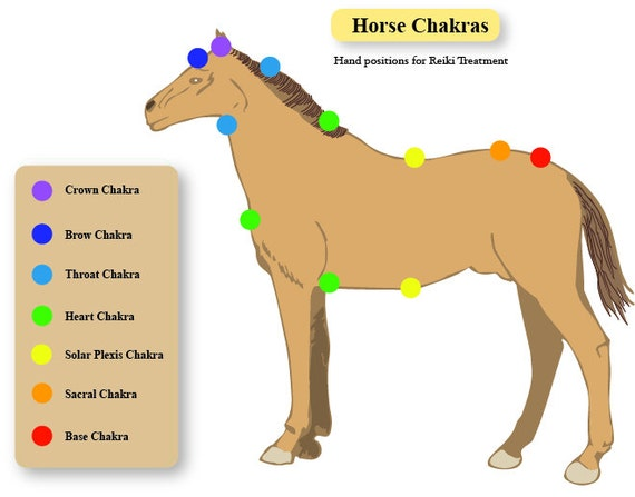 how to activate chakras in human body pdf