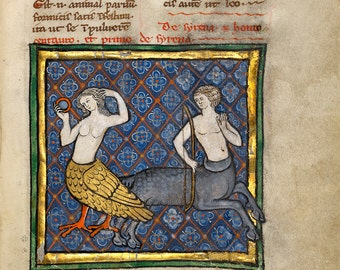 "Bestiary Illumination : ""A Siren and a Centaur"" (c1270) - Giclee Fine Art Print"