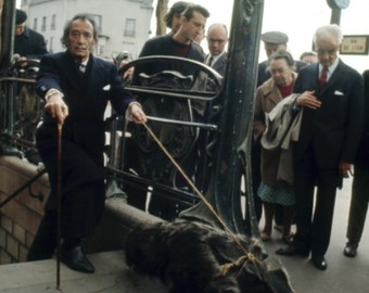 Salvador Dali walking his pet Anteater -Paris Metro Photo Print