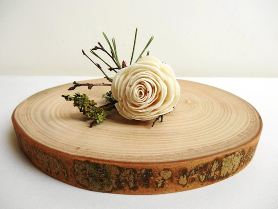 Wood slice centerpiece wood slab holiday for Wood trunk slices