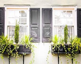 "Charleston Art, Window Photography, Fine Art Print, Window Box, Flowers, Green, Black, Southern Decor, Shabby Chic - ""Southern Summer"""