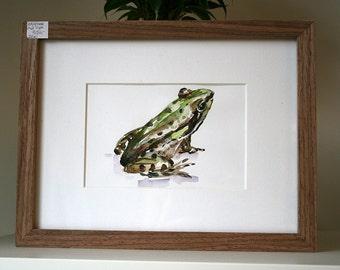 Original Frog watercolor  - Green Animal painting - Young baby Frog Art - Animal Watercolor Painting Frog illustration Zen frog green brown
