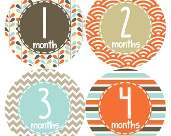 Monthly Stickers Monthly Baby Stickers Baby Month Milestone Stickers Baby Month Stickers Month to Month Bodysuit Stickers Shower Gift  379