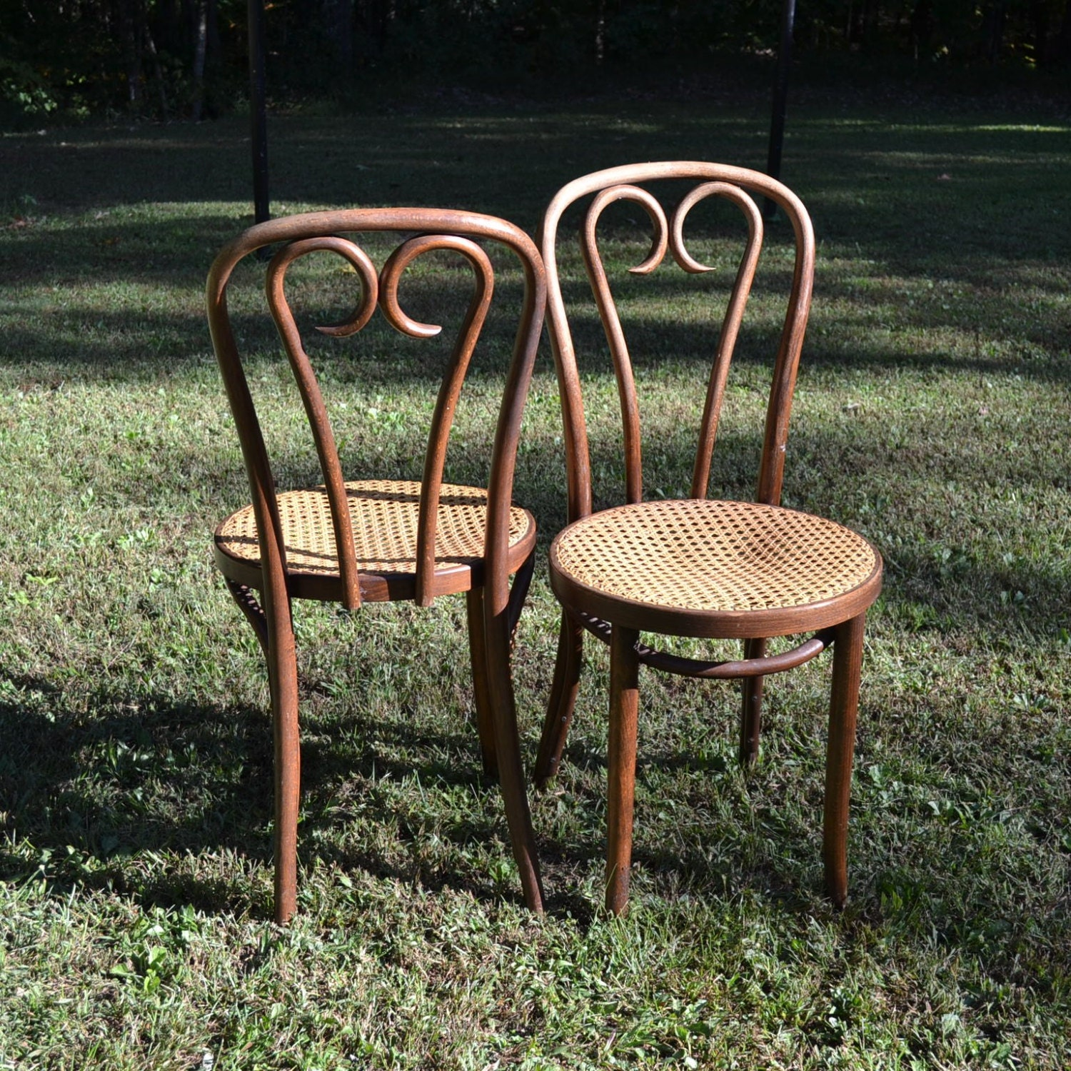 Vintage thonet style bentwood bistro chairs cane seat original - Cane bistro chairs ...