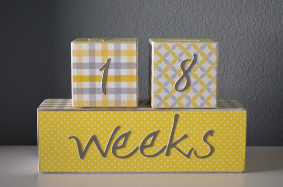 Items Similar To Baby Age Blocks Photo Prop Cubes