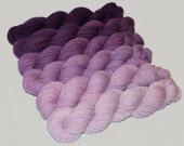 Gradient Yarn SWEATER SET- Hand dyed Superwash  sock yarn  in Plumeria