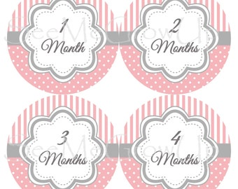 Baby Stickers Baby Girl Shower Gift Pink Baby Stickers Milestone Stickers Baby Month Stickers B124