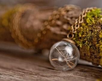 Dandelion necklace, nature necklace, wish holder, wish necklace, tiny necklace, dandelion pendant, antique brass necklace, glass vial