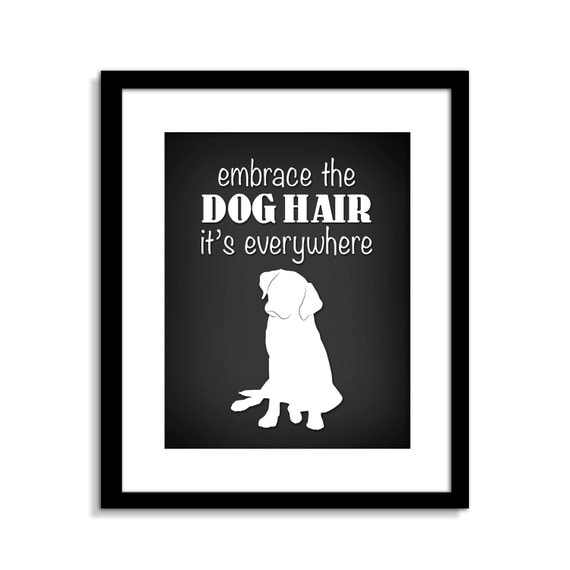 Wall Art Metal Sayings : Funny dog wall art sign embrace the hair