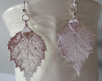 Genuine Birch Leaf Earrings/Sterling Silver Real Leaf/Botanical Earrings/Natural Preserved Birch Leaf/Botanical Jewelry/Organic Jewelry