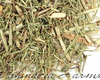 HORSETAIL SHAVEGRASS - 8 CUPS - Dried Cut Herbs Organic Natural Tea Bath Wiccan Potions Botanical Free Shipping