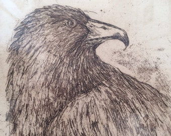 Donna Guardino Eagle Etching