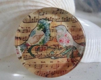 Song bird cabochon