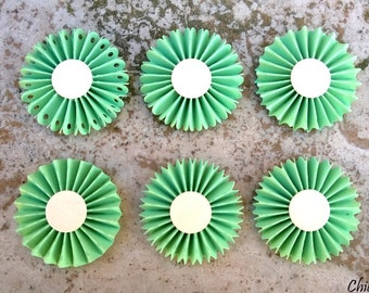Light green rosette