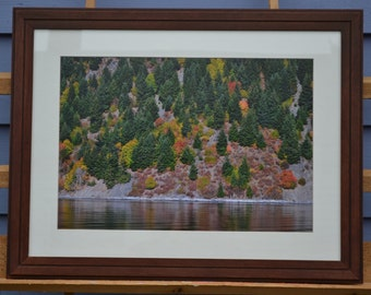 Autumn Gravity, Lummi Island art, teak framed local art, fall colors scene, rustic shoreline art, homeshore art, Washington State image