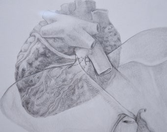 """Medical Illustration of a Left Hepatic Vein Anomaly Original  Bio-medical Art to show Heart and Liver """"Posterior Heart and Liver"""""""