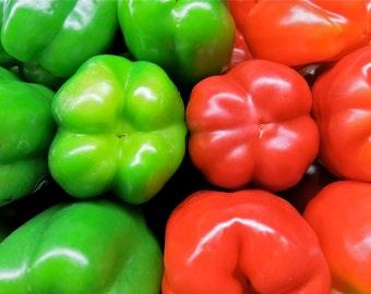 Pepper - California Wonder  (100% Heirloom/Non-Hybrid/Non-GMO)