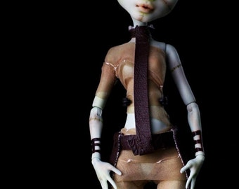 Dr.Travian Collection- EVE  (Monster High Custom Doll)