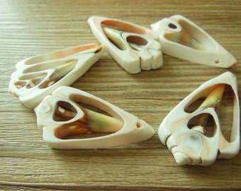 Natural Sliced Shells Beads Shell Pendents 40-55MM