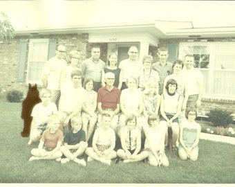 Family Reunion - ALFfirmation of a vintage photograph