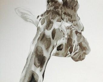 Print of Pencil Drawing of Giraffe I