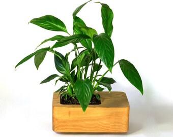 Tanti Design Cedar Planter *Large*