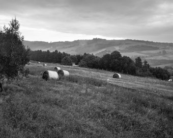 Hay Rolls in the Fields, Landscape, Italy - Photography fine ART print