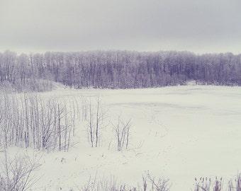 "Nature Photography - Canada, winter landscape, print 8x10, fine art photopragh, nature still life - ""Winter Haze"""