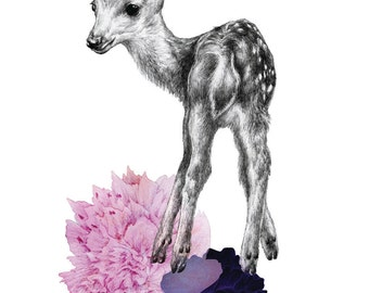Fawn/Dear Illustration Giclee Print