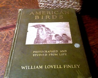 Antique Bird Book - 1913