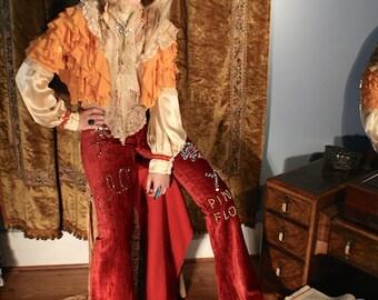 from Fred Segals Pink Floyd 1960's embellished velvet bell bottom pants rare