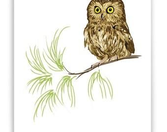 "Tiny Owl 8"" x 10"" Art Reproduction"