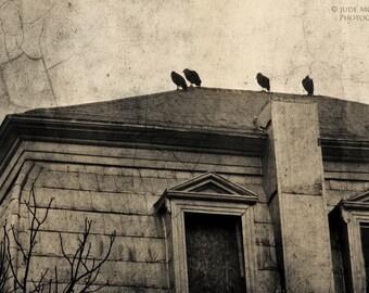 Raven Crow print building architecture home decor Halloween