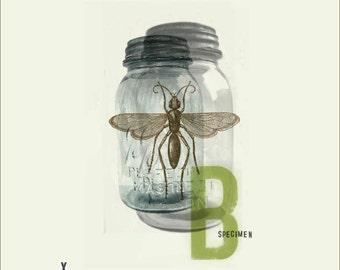 Bug Jar Collage Print