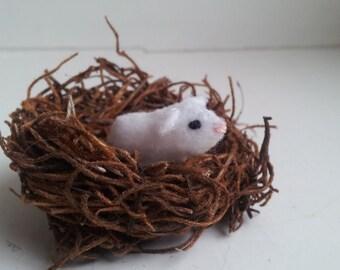 Tiny Guinea Pig - miniature guinea pig - felt guinea pig plush - guinea pig ornament - albino guinea pig