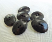 Antique Vegetable Ivory Buttons in Jet Black - Unusual Oval Shape