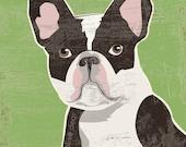 French bulldog LARGE fine art reproduction print