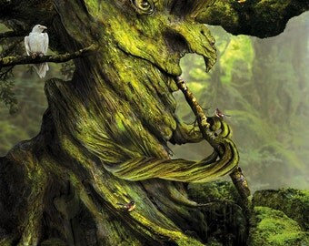 The Whistling Tree by Susan Schroder -  Mythic Fantasy art print