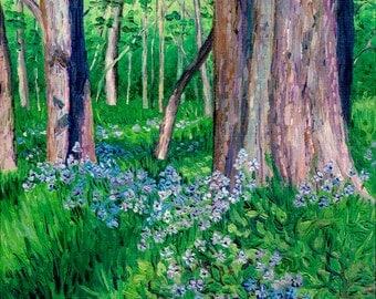 Woodland Phlox, 8 x 10 in., giclee print