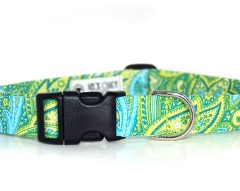 Pina Colada Paisley Green Paisley Dog Collar